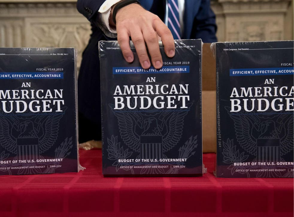 A Congressional staff member delivers copies of US President Donald Trump's Fiscal Year 2019 Government Budget