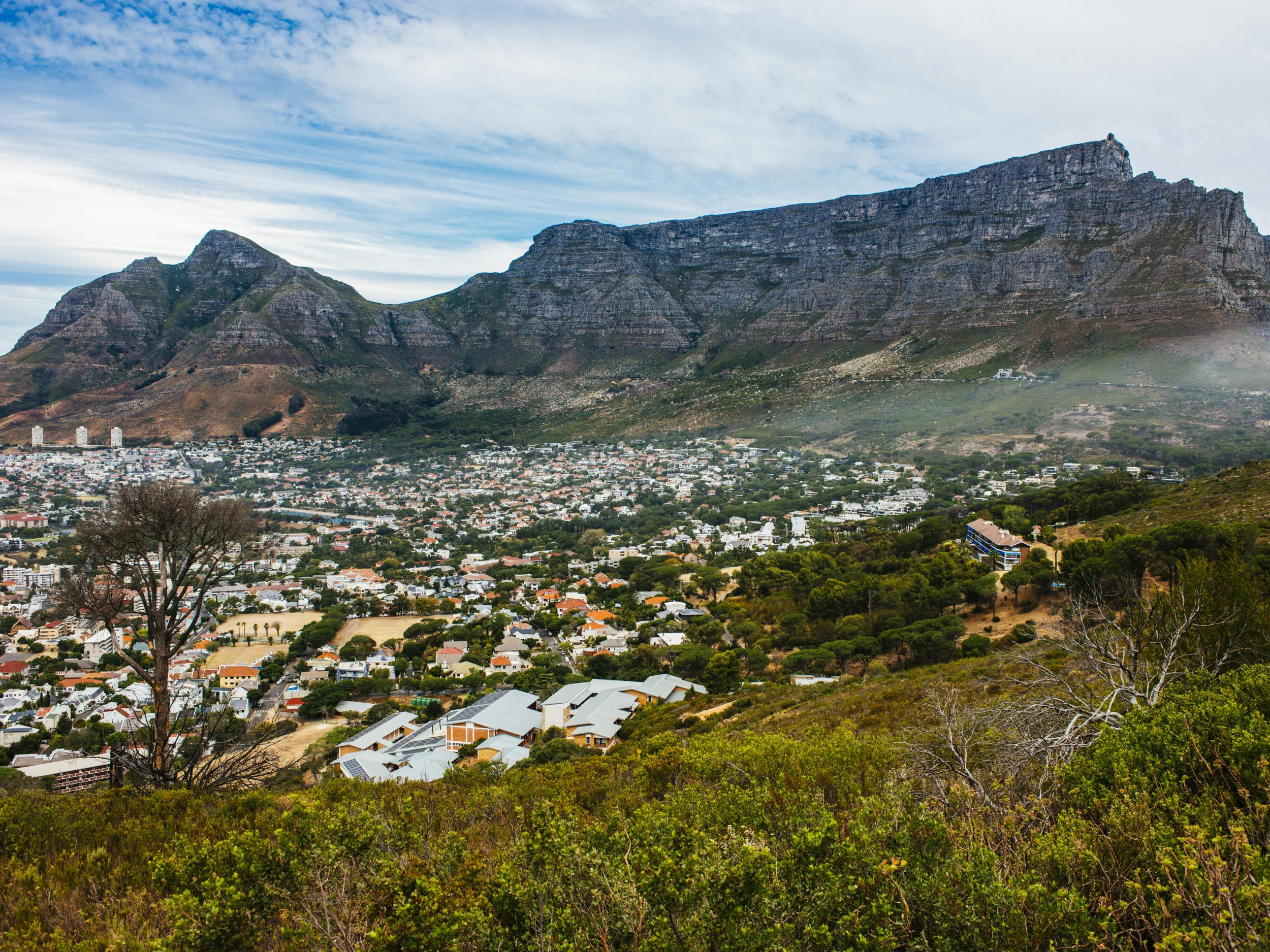 Cape Town - latest news, breaking stories and comment - The
