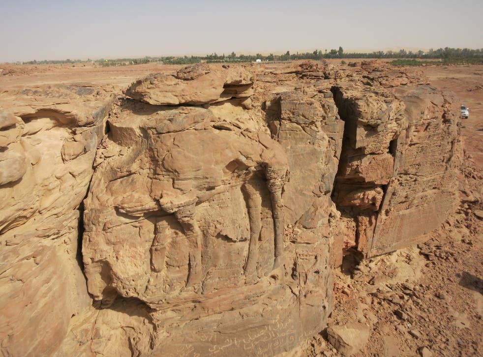 High relief carving of a standing dromedary on sandstone spur