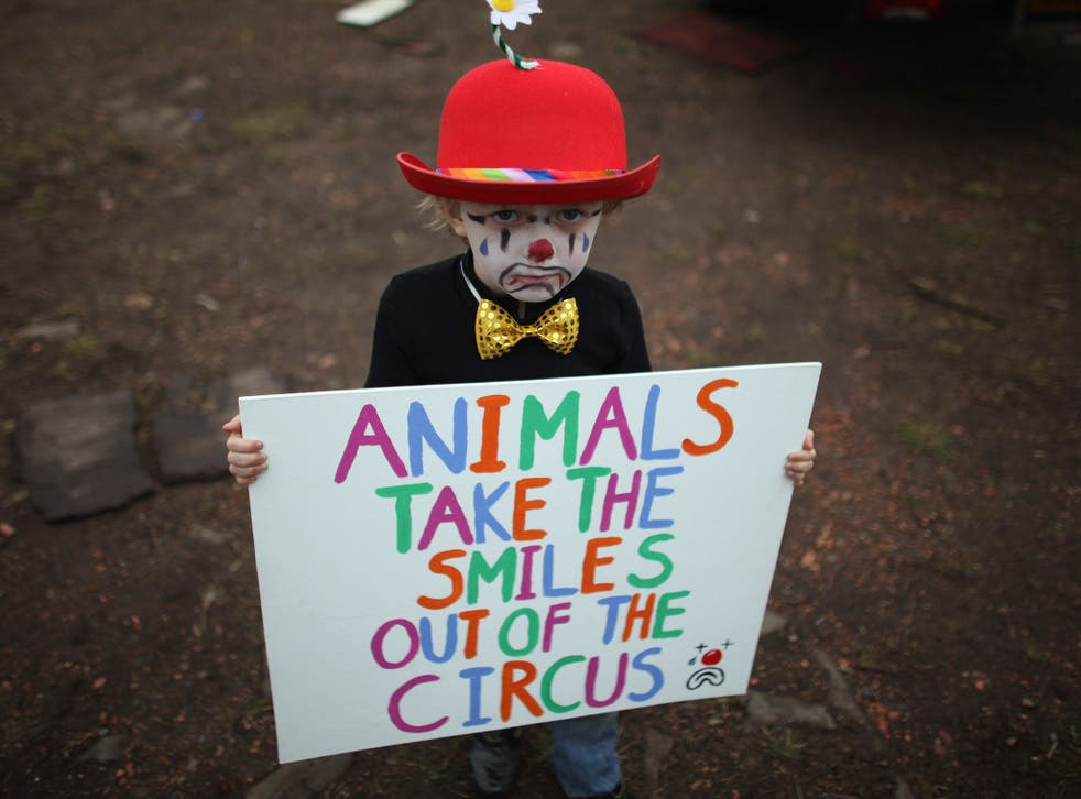 The days of wild animals entertaining audiences could end in Wales