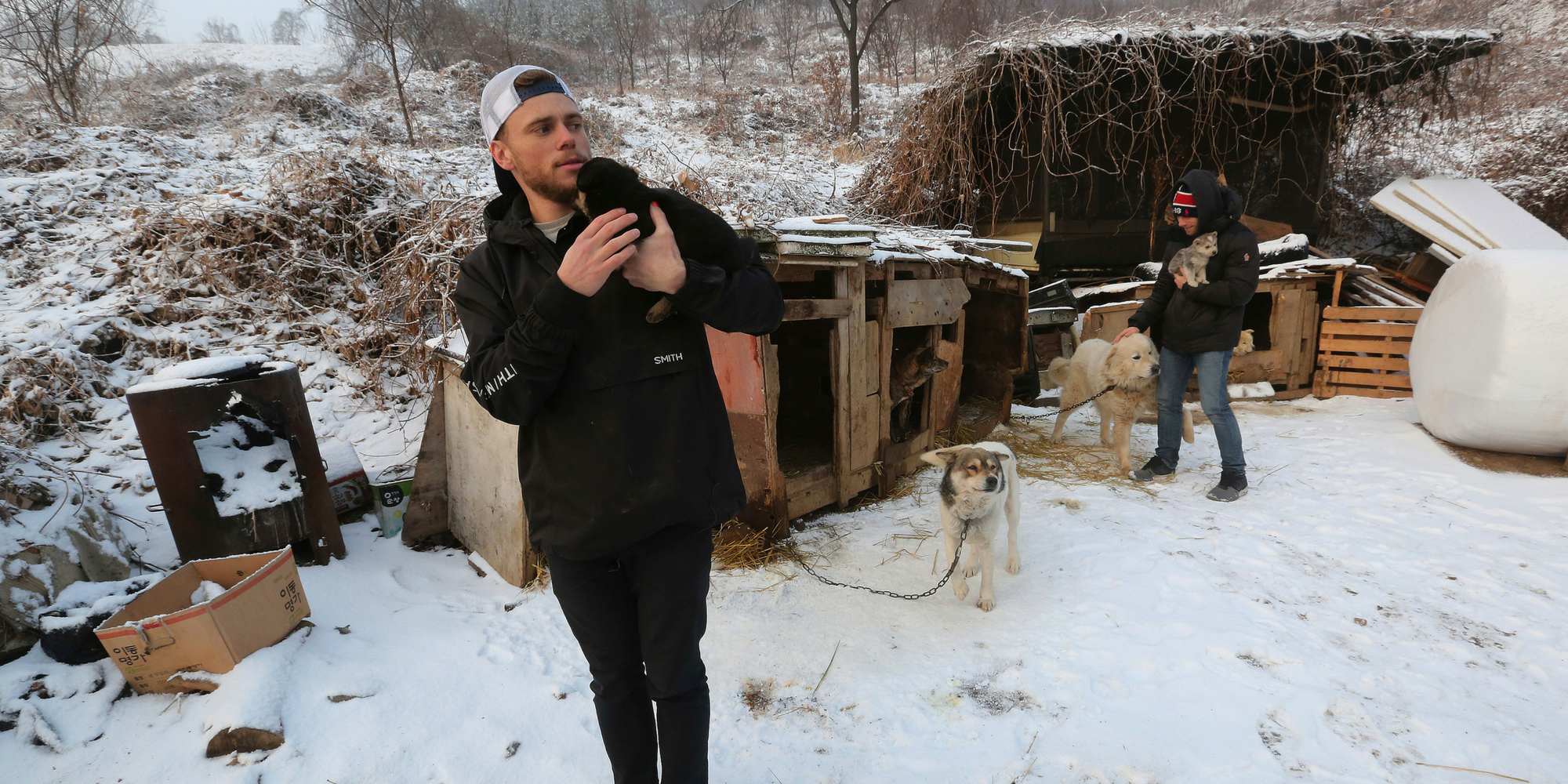 Olympian visits South Korean dog farm and tells owners: 'Dogs are friends not food'