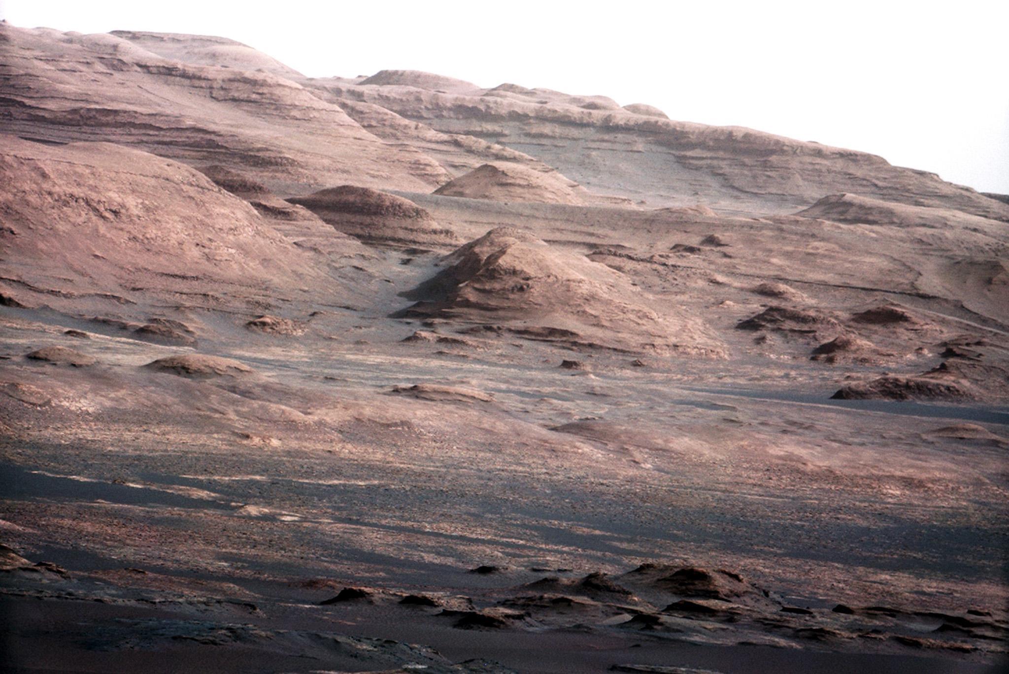 False reports claim Nasa destroyed proof of alien life on Mars