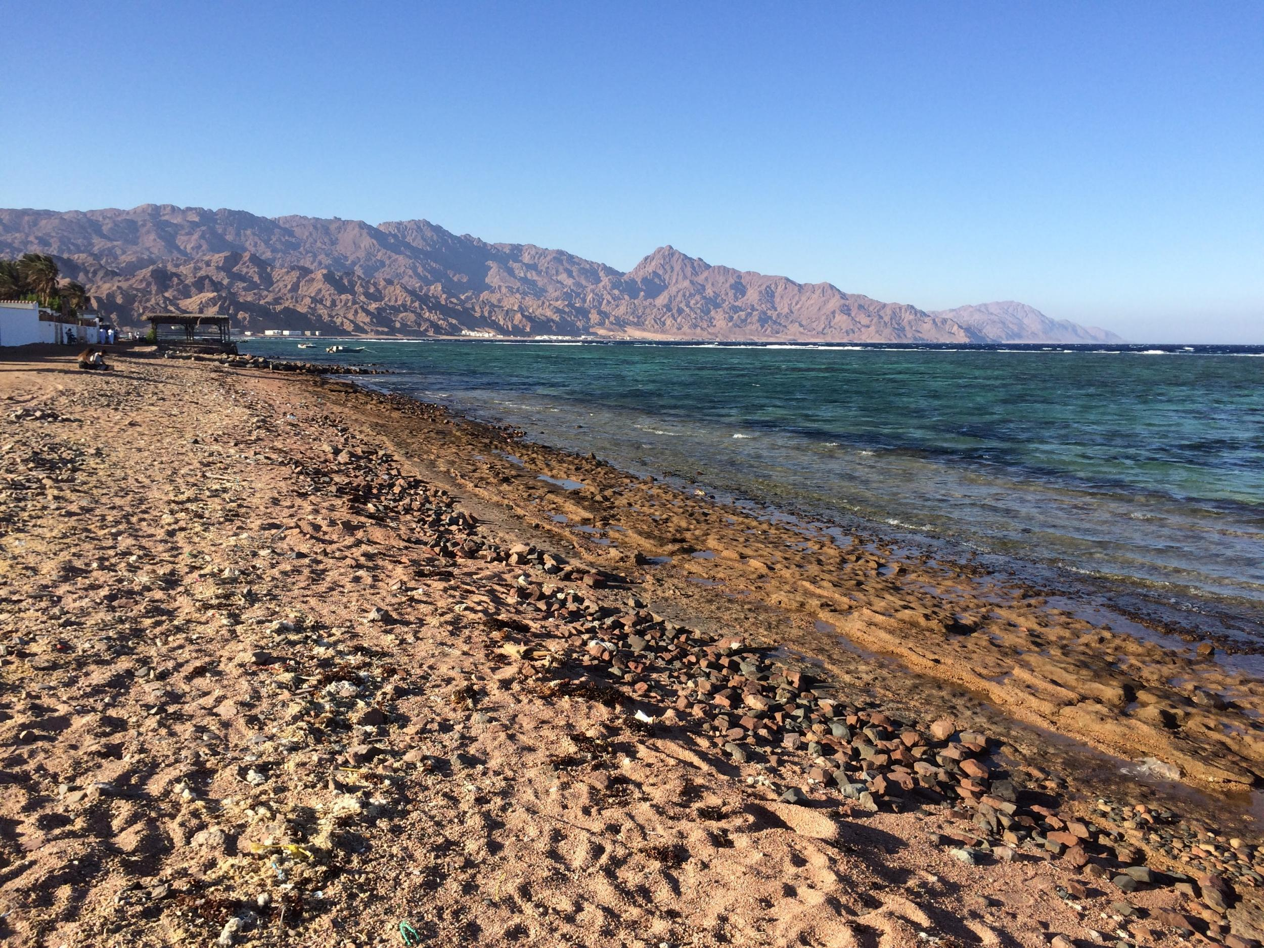 Dahab the red sea diving resort that 39 s making a comeback the independent - Dive inn resort egypt ...
