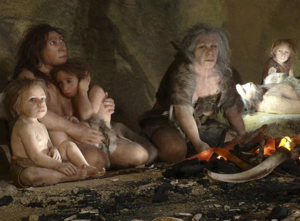 Current research suggest Neanderthals (artist's impression) went extinct over a period of 4,000 to 10,000 years