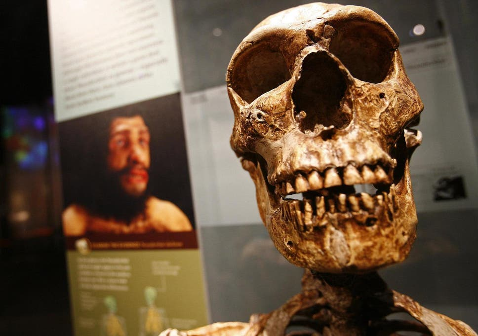 New discovery shows humans were innovating far earlier than ...