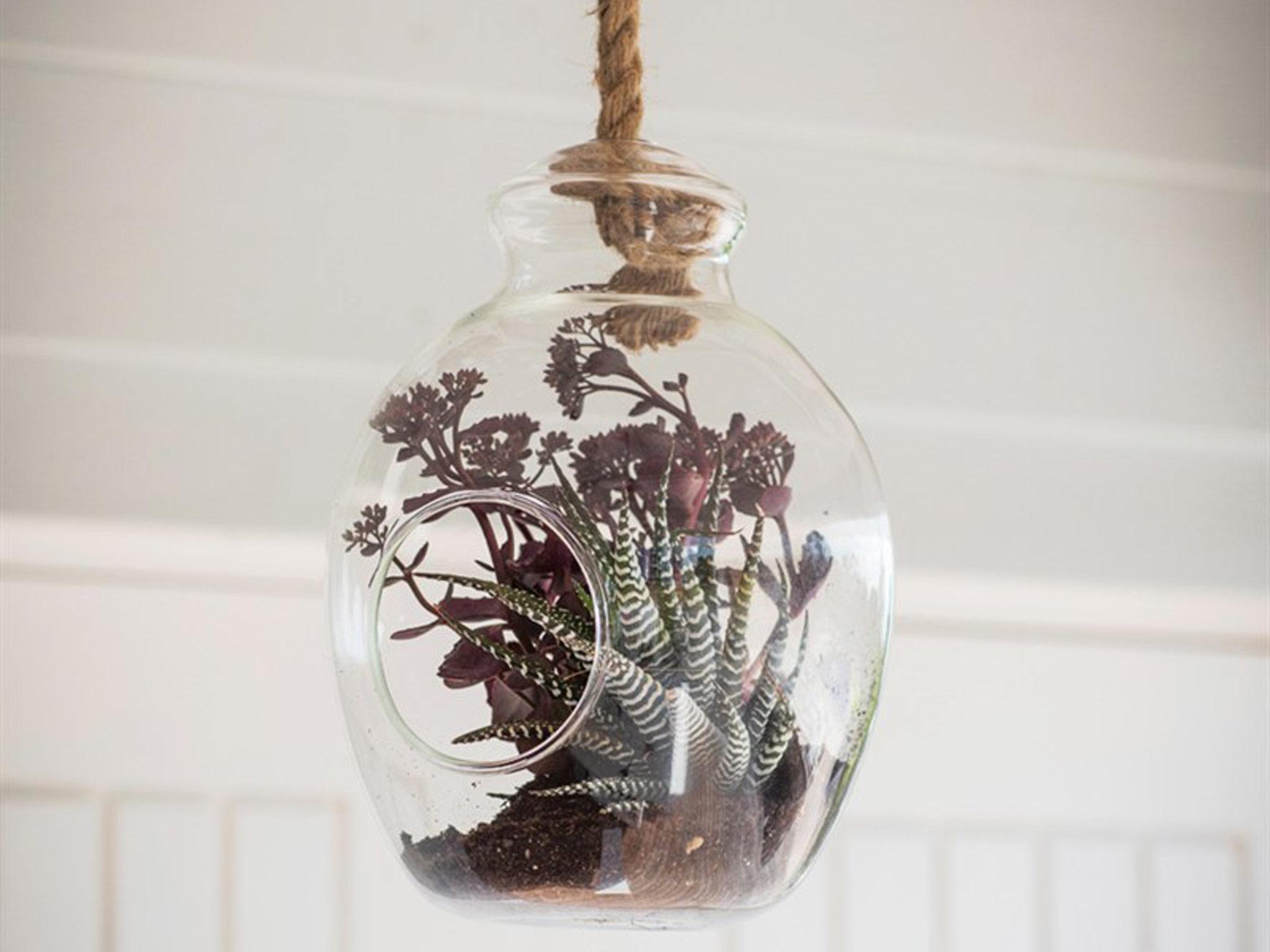 11 best hanging planters the independent. Black Bedroom Furniture Sets. Home Design Ideas