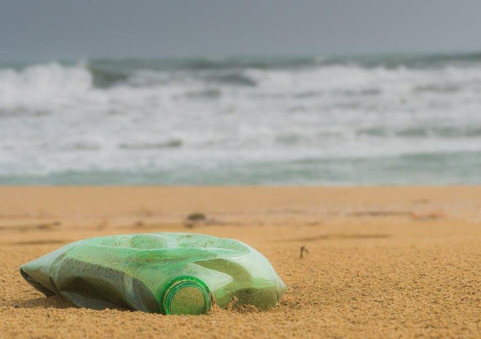 Plastics In Oceans Are Mounting But Evidence On Harm Is
