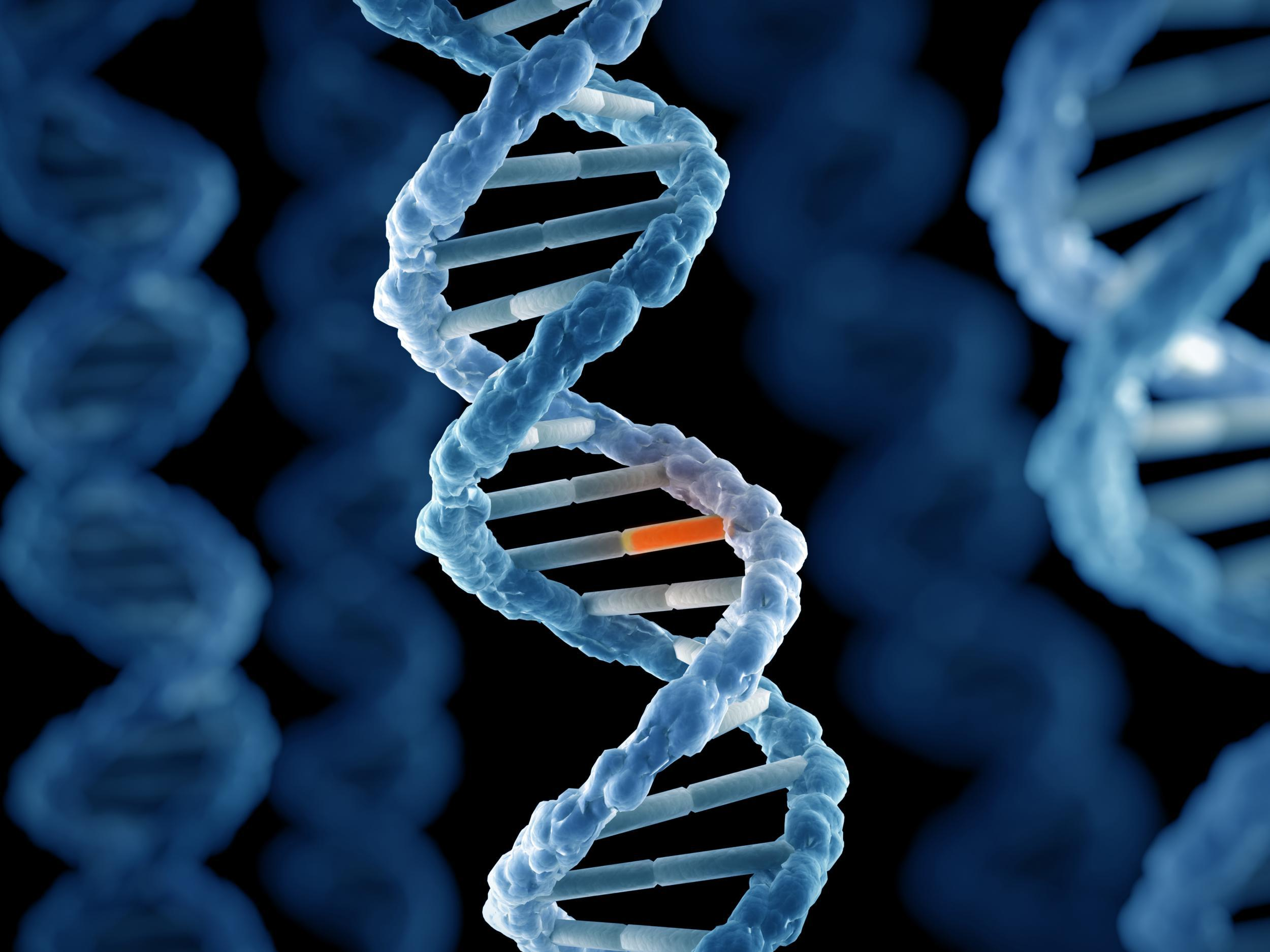 Cot death risk increased by rare genetic mutation, finds