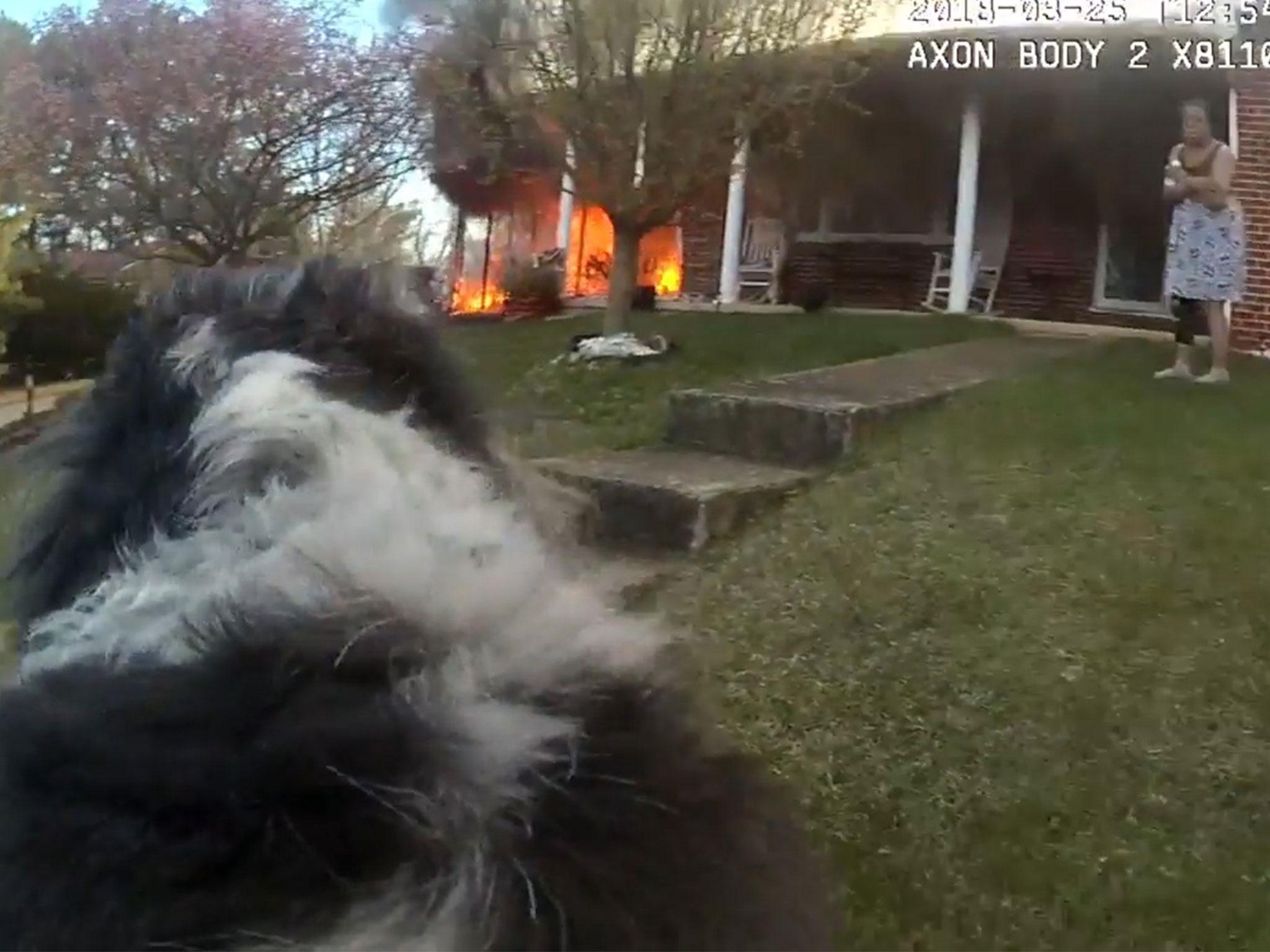Bodycam footage shows police officer rescuing dog from house fire