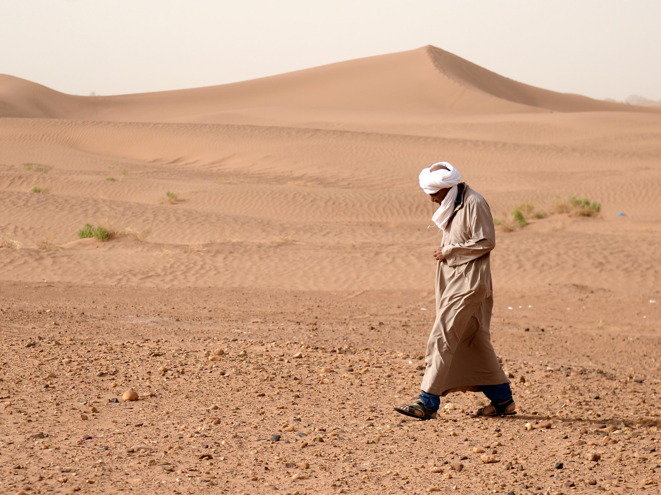 World's largest desert has grown even larger due to climate change | The  Independent