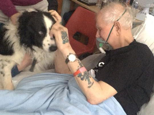 Hospital relaxes rules to let dying man see his dog one last
