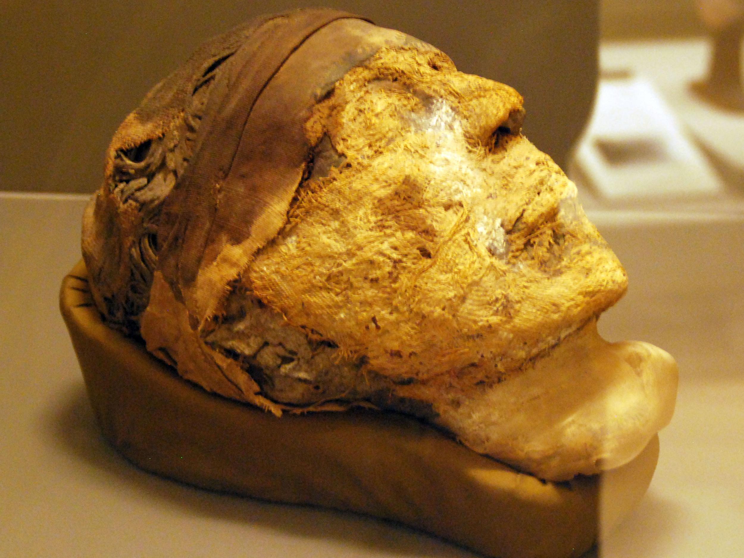 Tomb secrets: The FBI cracks the DNA code on an ancient Egyptian mummy