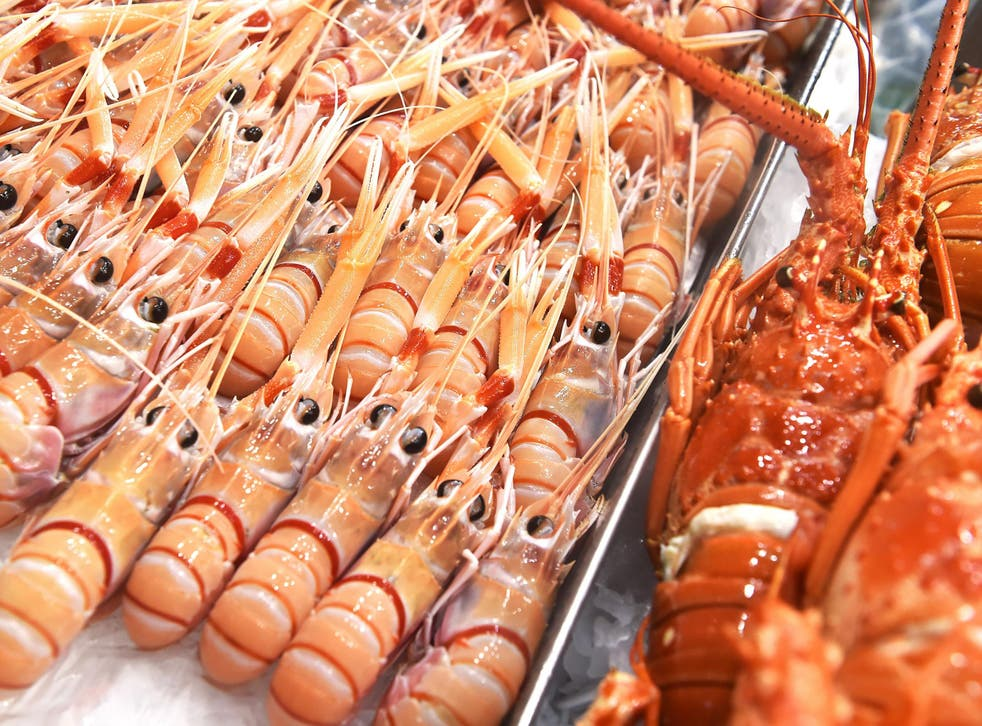 Fishing for lobsters produces greenhouse gas emissions that are comparable with beef and lamb production