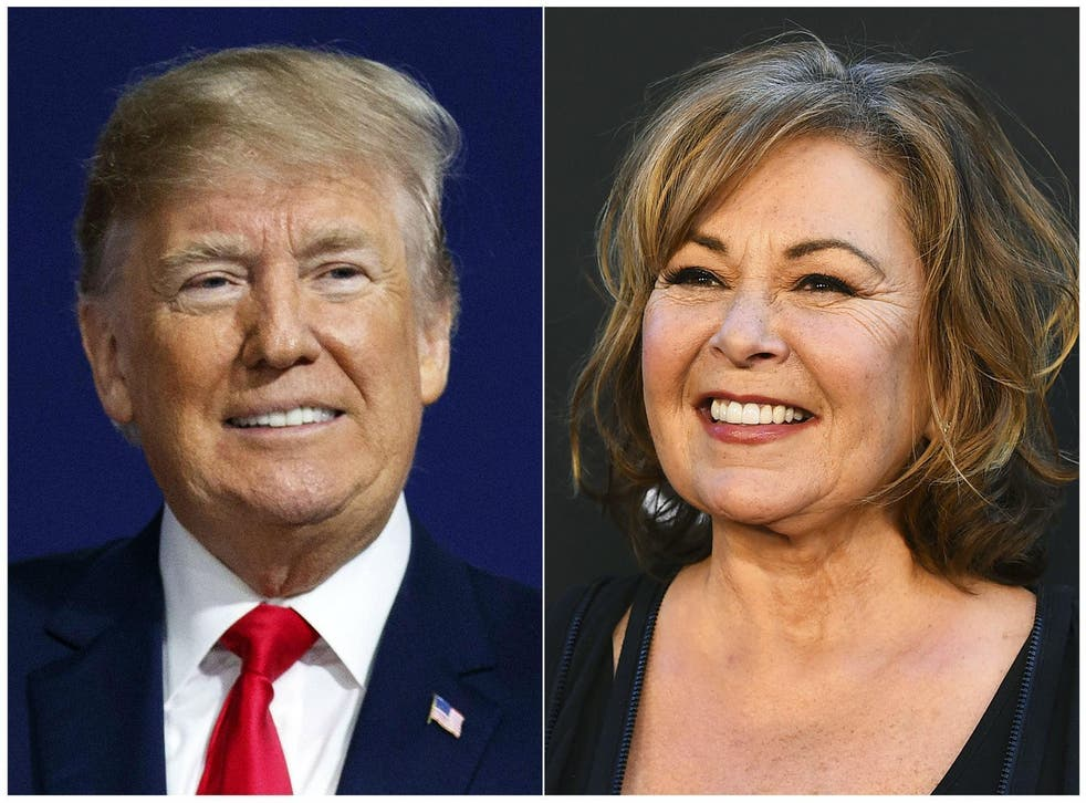 By supporting Donald Trump, Rosanne Barr is stirring up even more controversy than she did when her show was originally aired 20 years ago