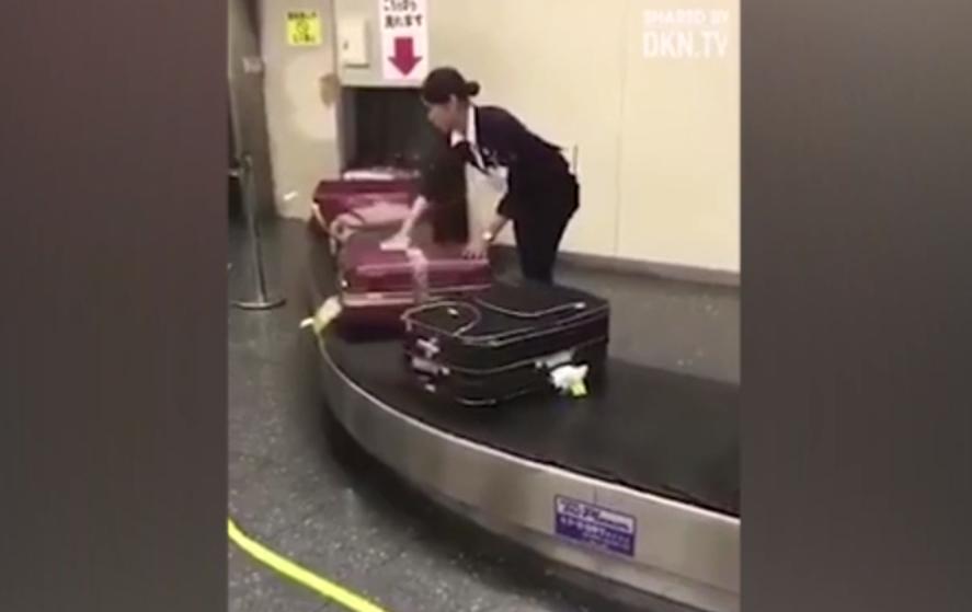 Japanese baggage handler filmed cleaning luggage before passengers arrive
