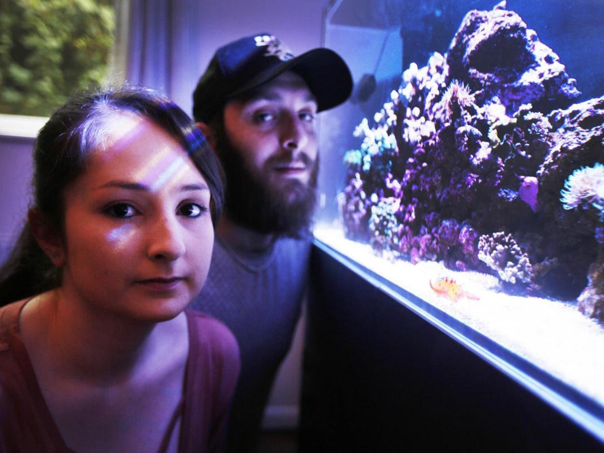 Fish owner tells how cleaning out tank released deadly palytoxin that poisoned family and led to closure of entire street