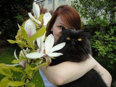 Family's pet cat and dog 'deliberately killed with poison-laced