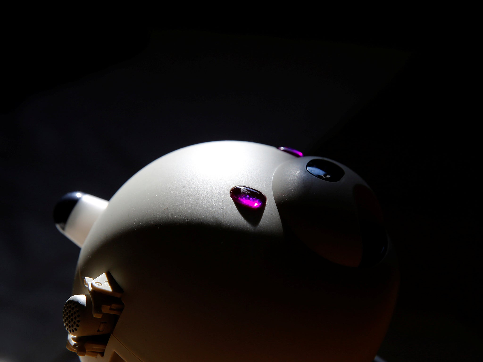 How robot carers could be the future for lonely elderly