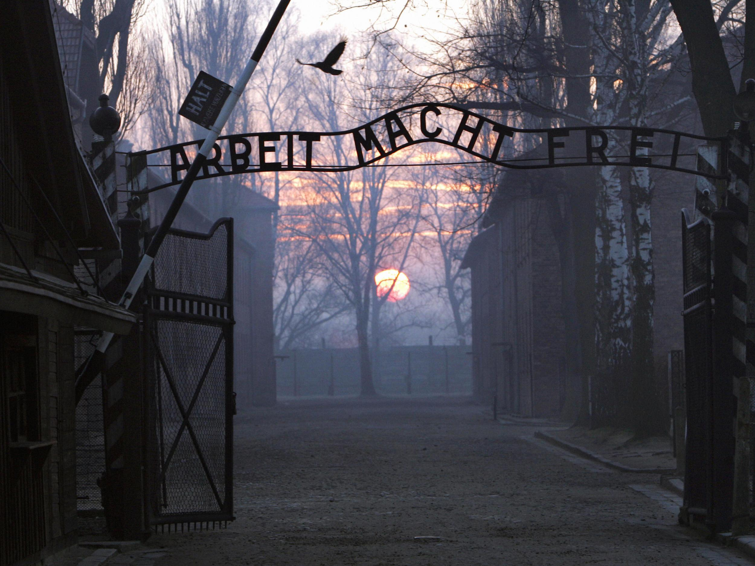 Chelsea want to send racist supporters to Auschwitz to combat antisemitism