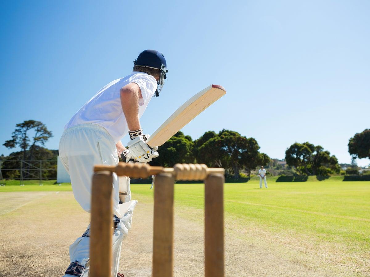 5 best cricket bats under £350   The Independent   The Independent
