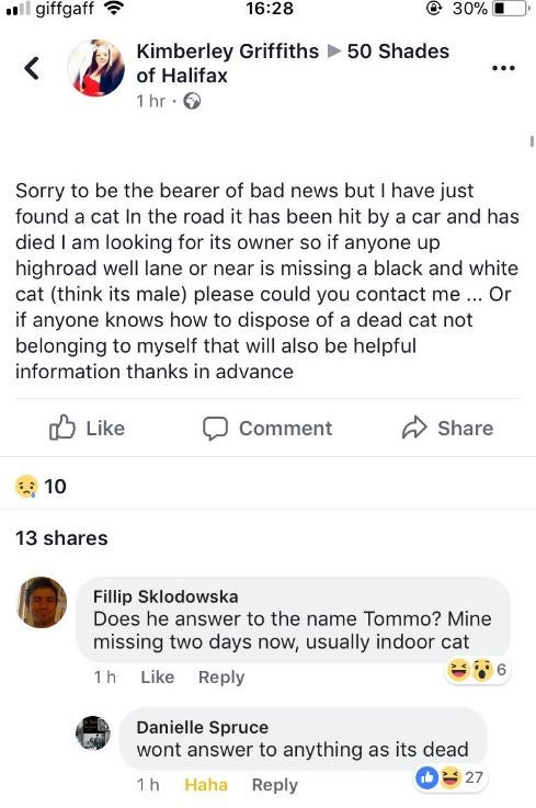 This woman found a dead cat and announced it on Facebook