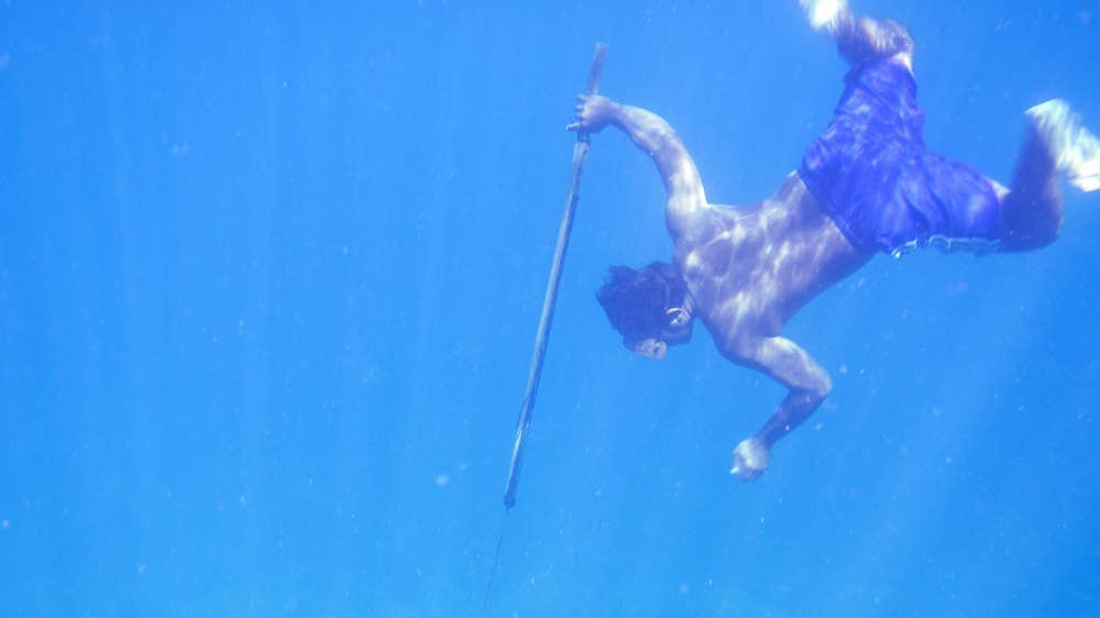 A Bajau diver hunts fish underwater using a traditional spear