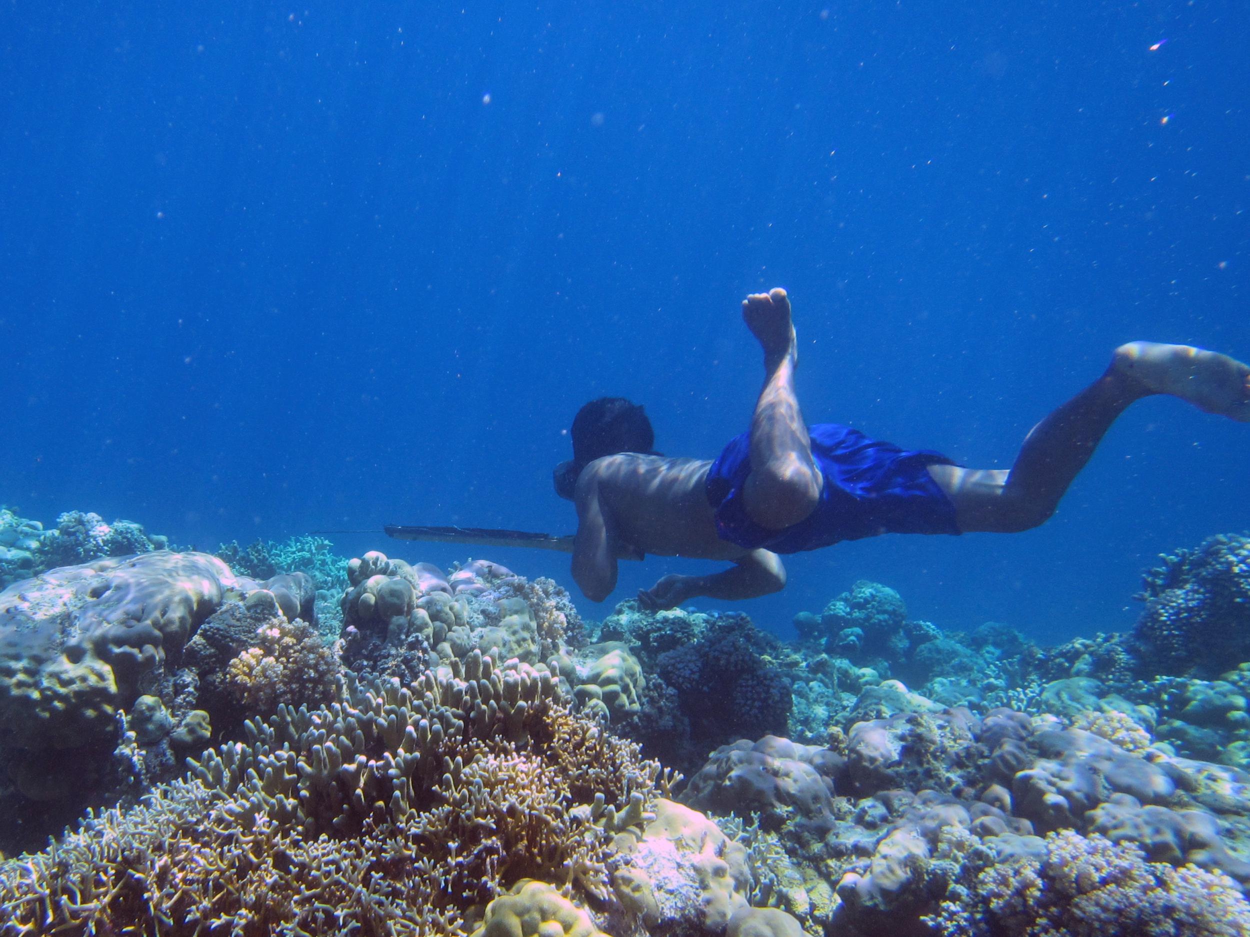 A Bajau diver