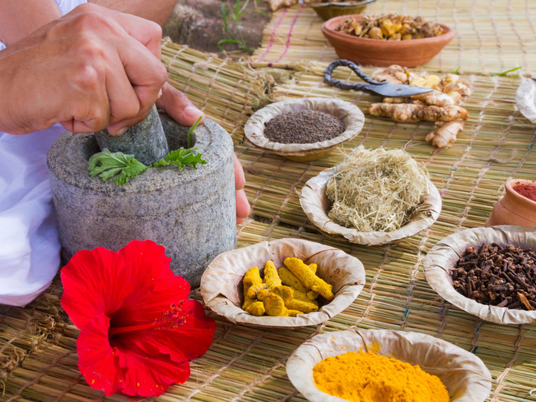 How Traditional Health Claims About Indias Ayurvedic Foods