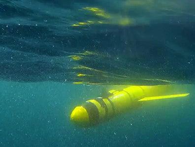 'Dead zone' larger than Scotland found by underwater robots in Arabian sea