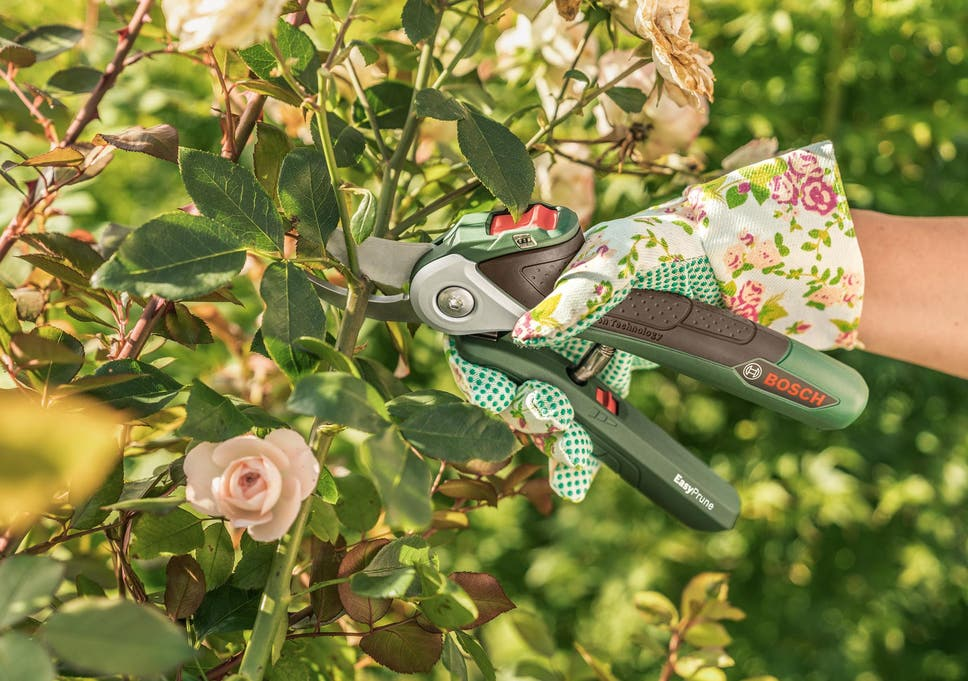 10 best pruning tools | The Independent