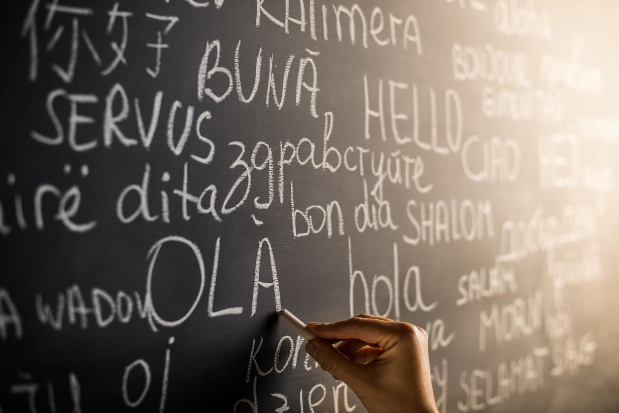 Learning a new language essay