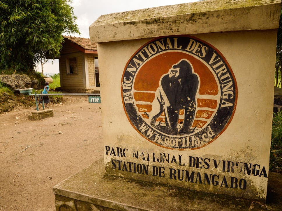 Two british tourists kidnapped in democratic republic of congo have two britons who were kidnapped by an armed group while visiting the virunga national park have fandeluxe Image collections
