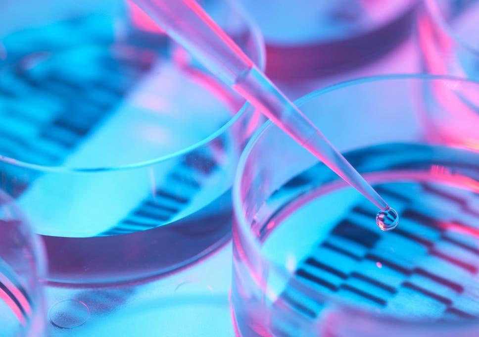 How DIY gene editing could lead to a global catastrophe | The