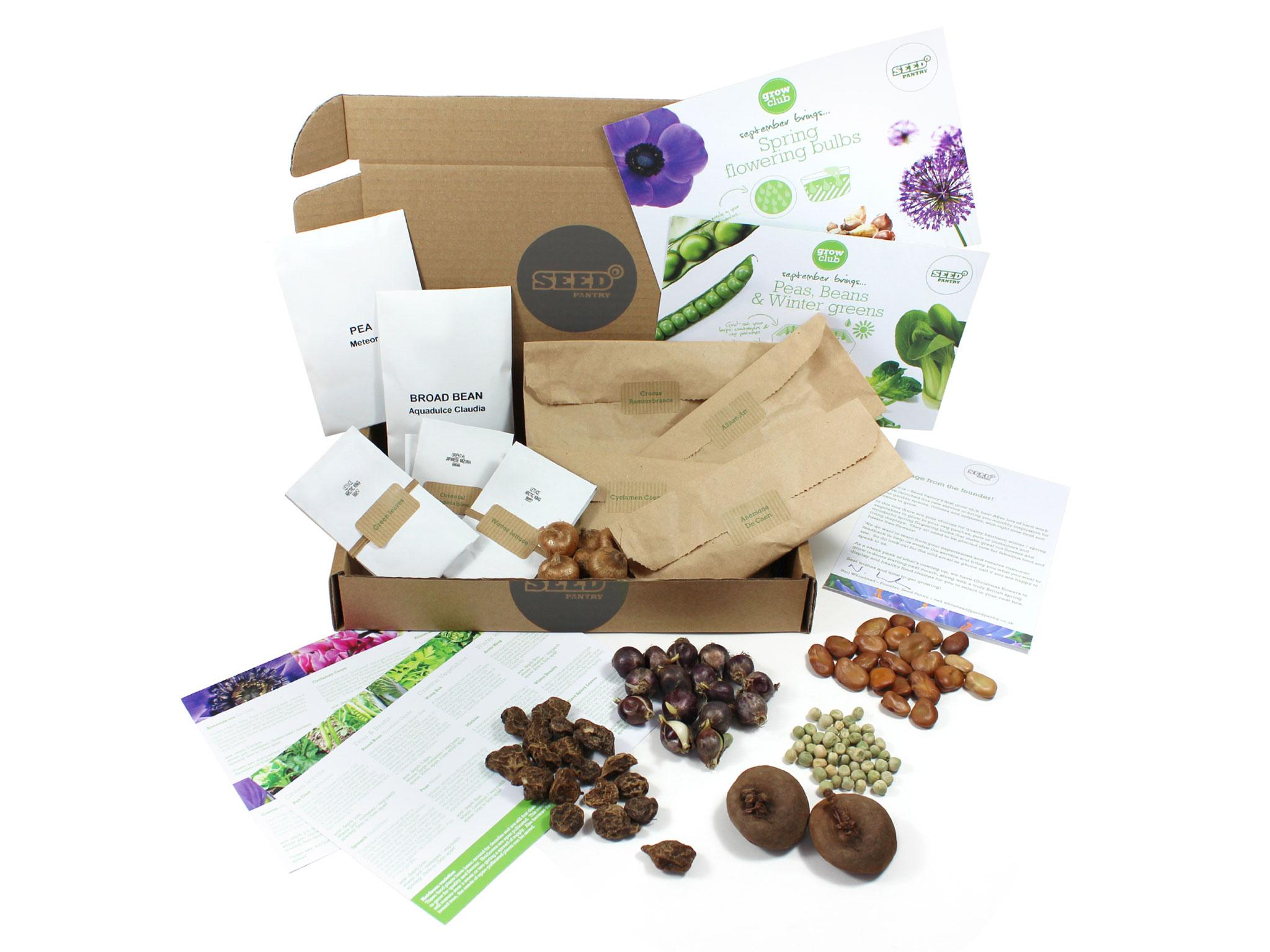 8 Best Plants And Gardening Subscription Boxes The Independent