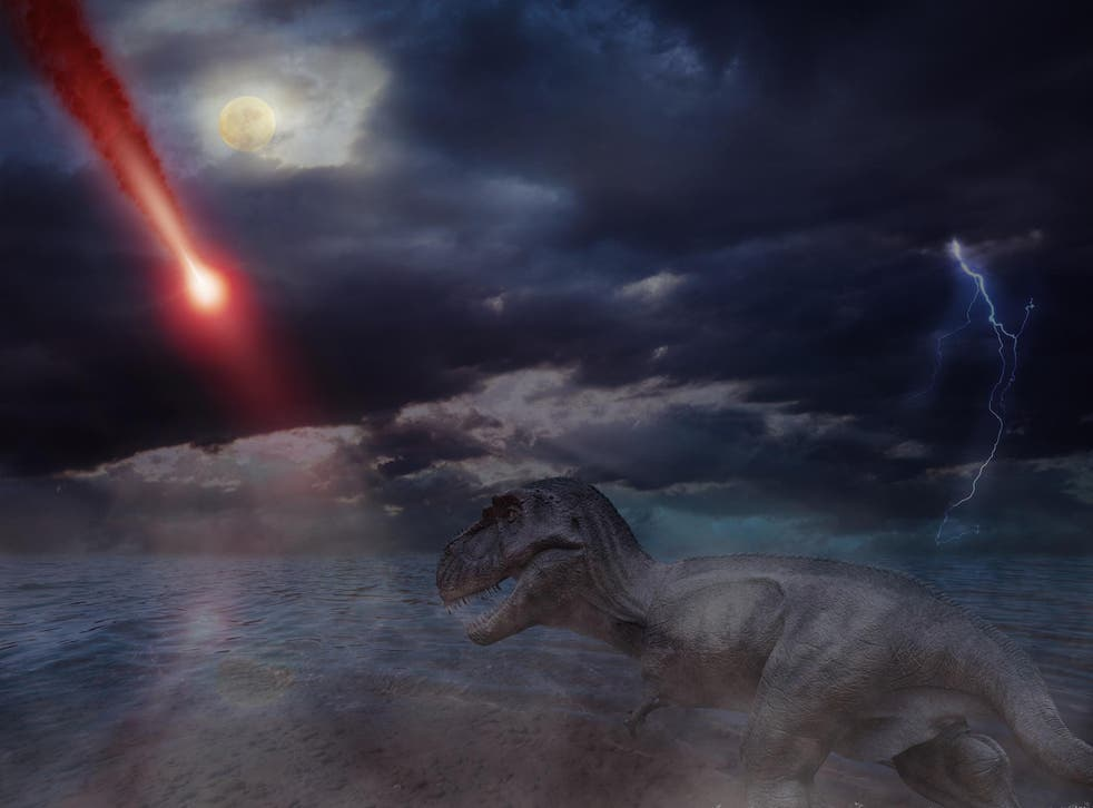 Following the initial impact, the asteroid that wiped out the dinosaurs led to wildfires that burned for months