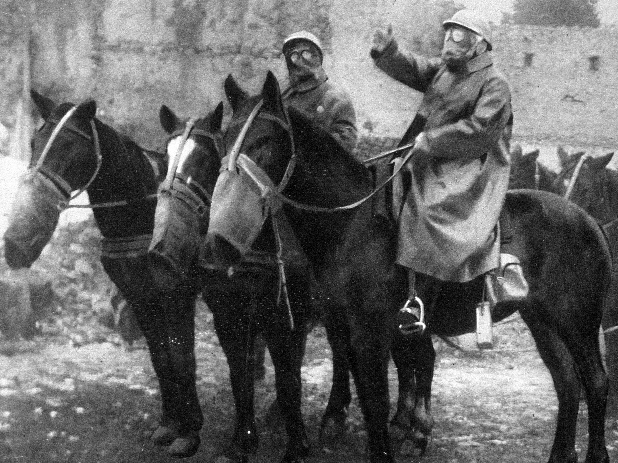 87b1ef0116de2 New statue honours heroic horses of First World War