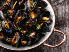 All UK mussels contain plastic and other contaminants, study finds