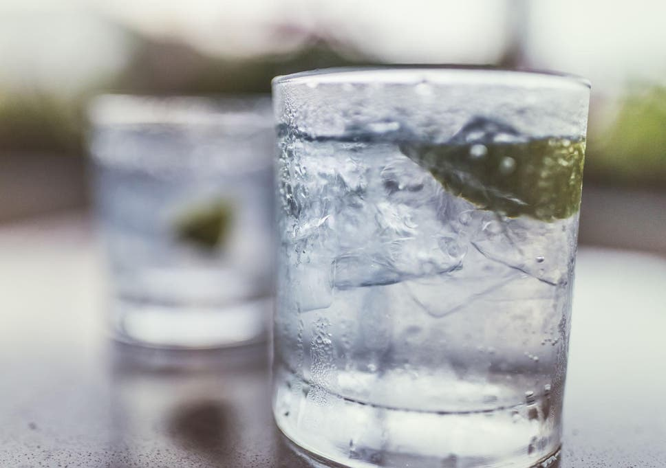 10 Best European gins | The Independent