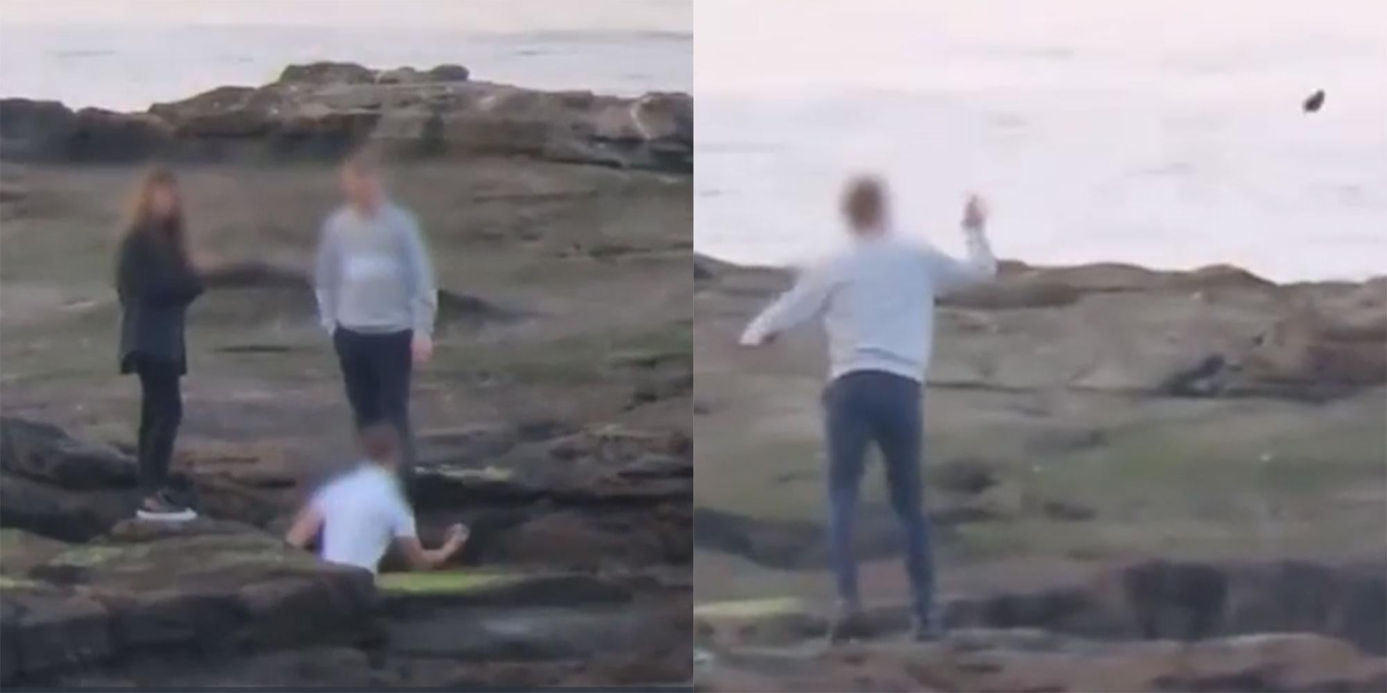 People Are Filming Themselves Throwing Rocks At Seals To