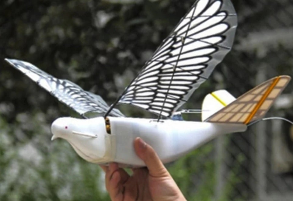 drone-surveillance-china-spy-bird.jpg