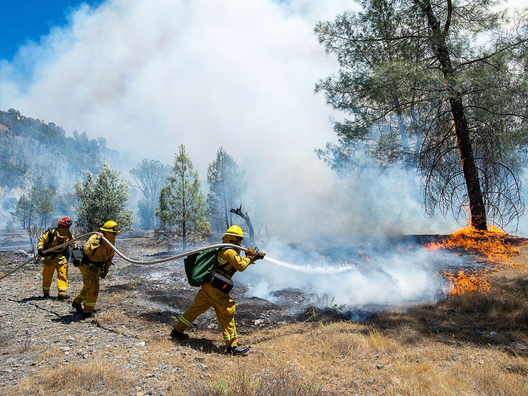 California wildfires trigger state of emergency after devouring over 10,000 acres of land