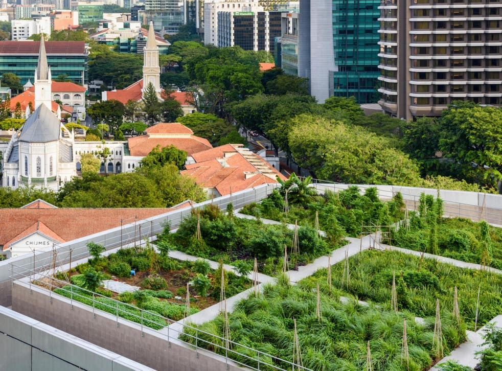 Singapore increased its number of green roofs and spaces ninefold between 2006 and 2016 and markets itself as a 'garden city'