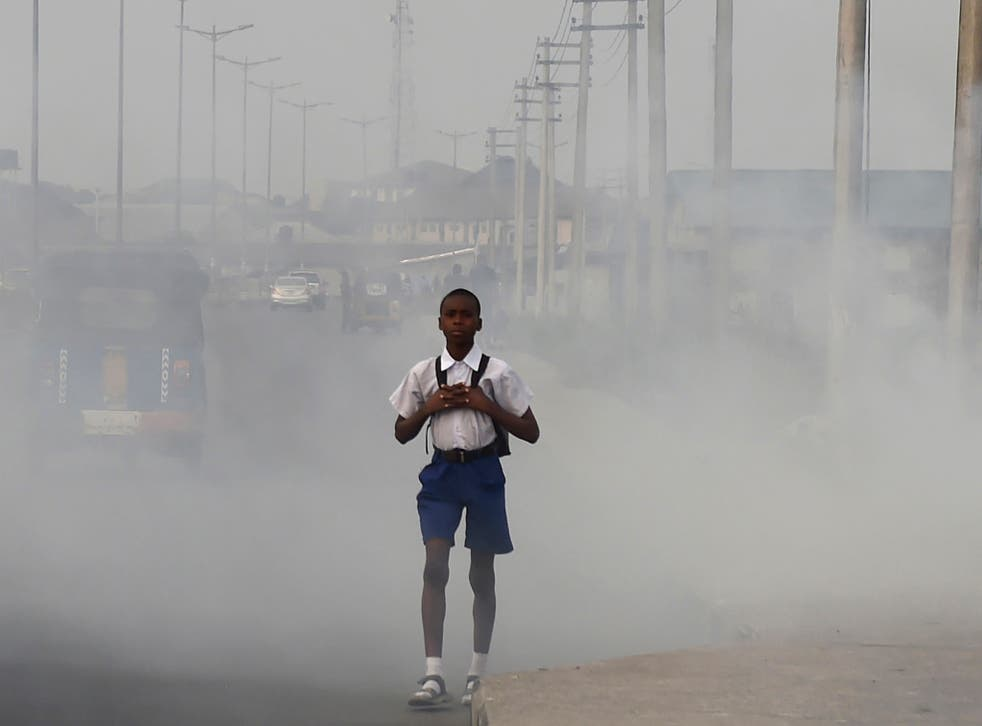 A schoolboy walks through smoke and fumes emitted from a dump in the Nigerian city of Port Harcourt