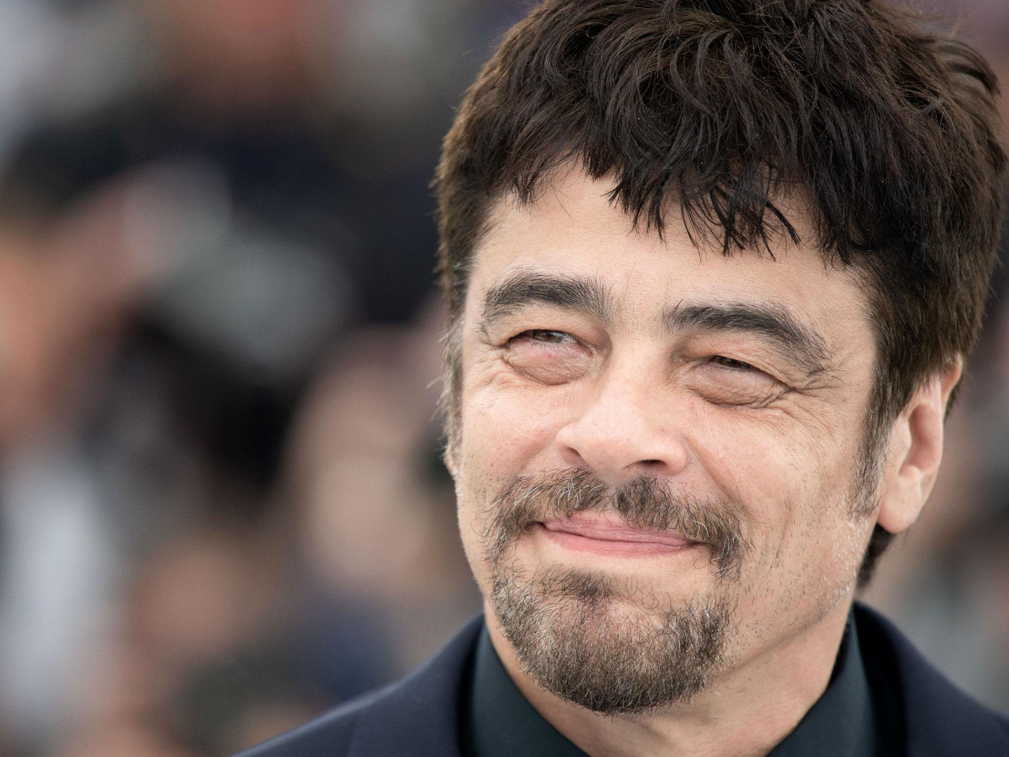 Benicio Del Toro Interview: 'Trump's Mexico Border Wall