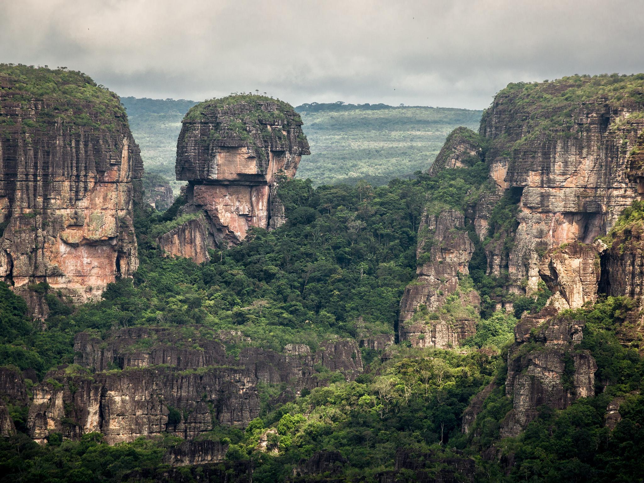 colombian-rainforest-2