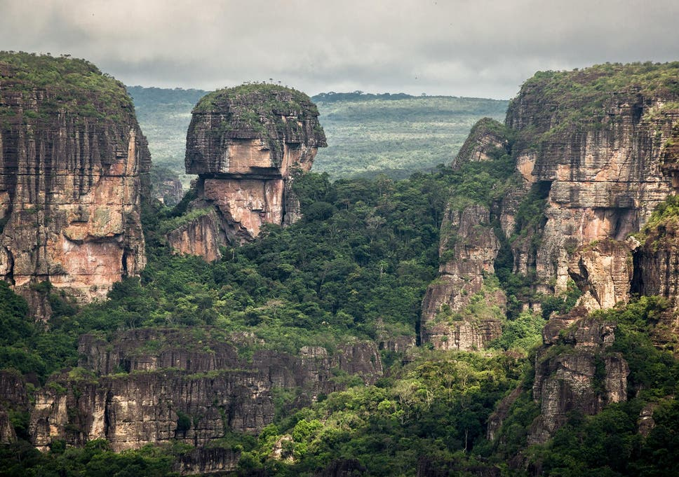 colombian national park becomes largest protected rainforest and new