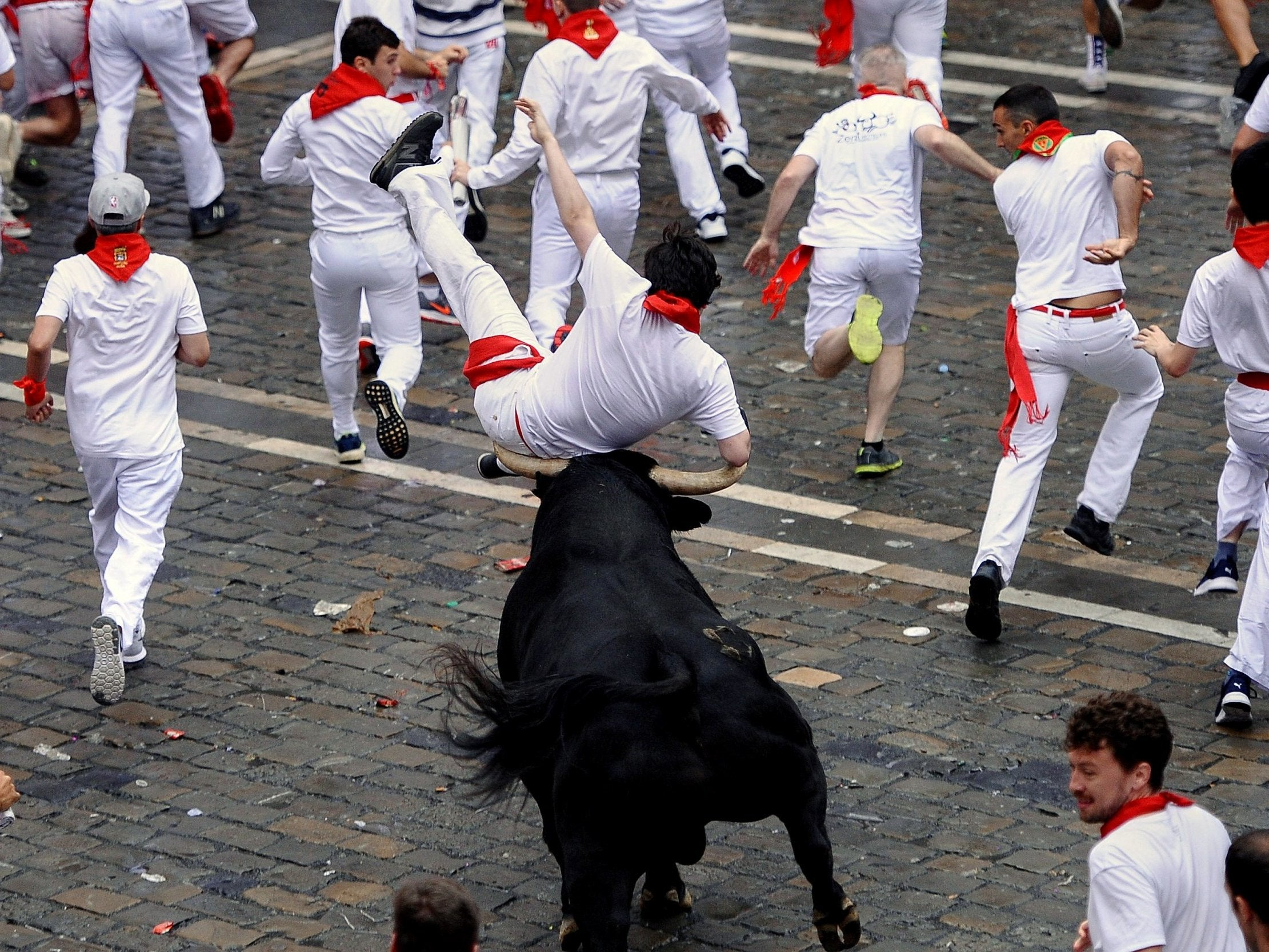 Pamplona bull running: Five wounded on first day of controversial Spanish festival