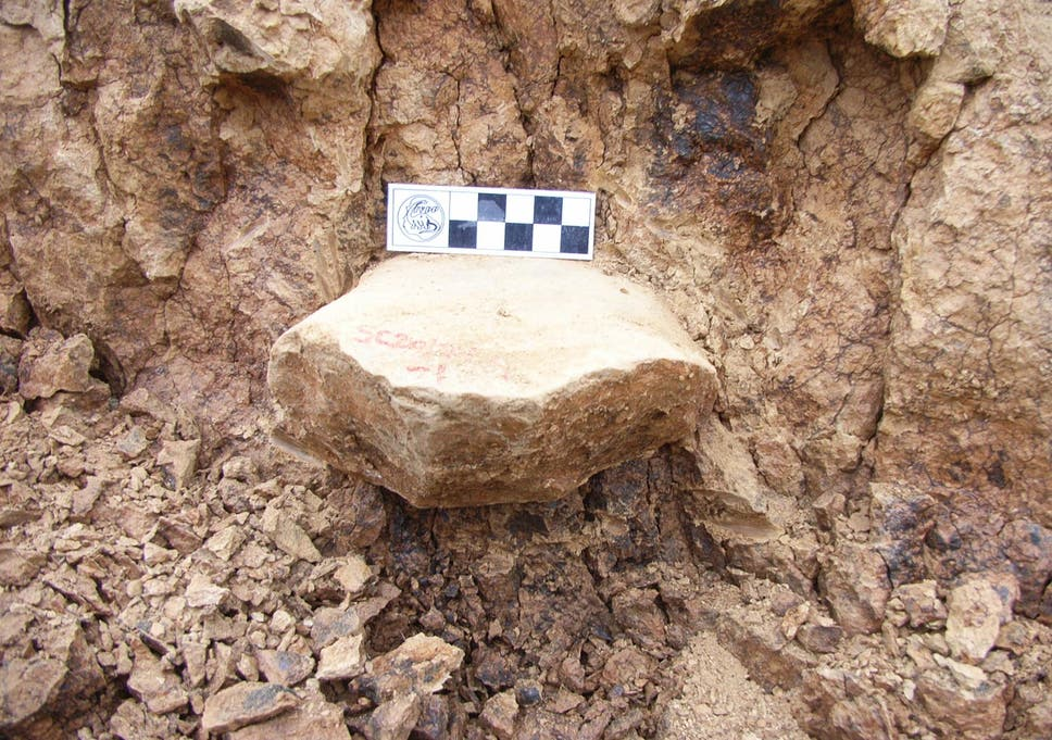 One of the tools from the discovery site in Shangchen, China