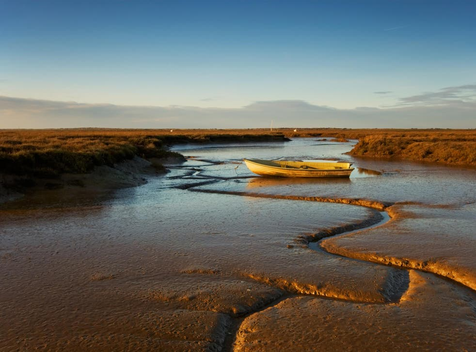 Deepdale Marshes in Norfolk are among the areas of wetland threatened by the rising tide