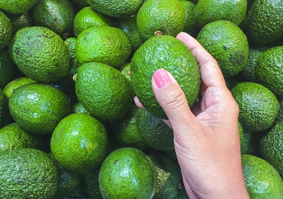Giant head-sized avocados are on sale in Australia | The